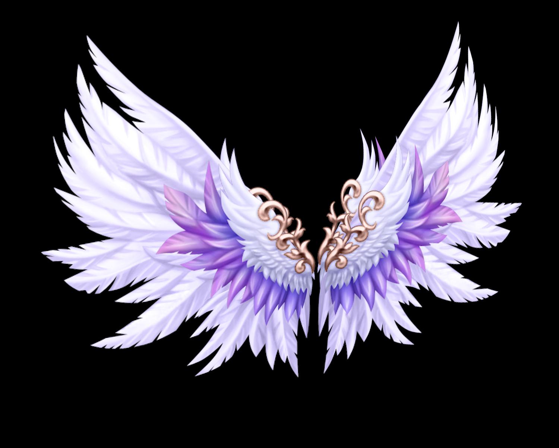 倾城阳光翅膀